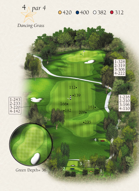 Map with stats for hole 4