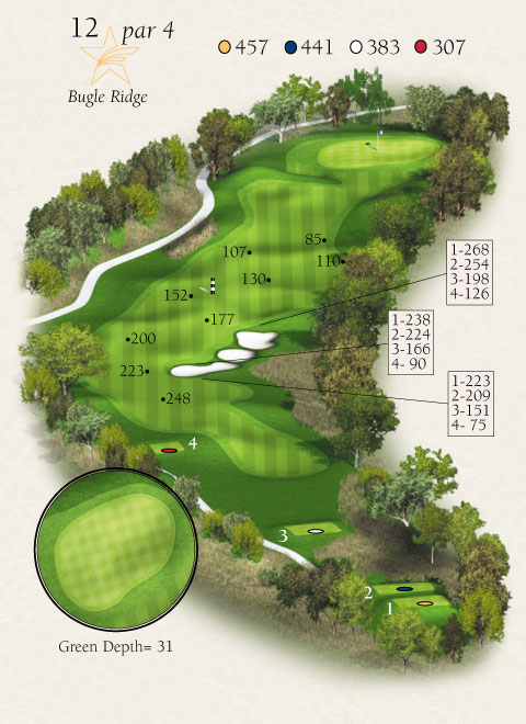 Map with stats for hole 12